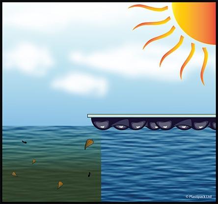 EnergyGuard™ swimming pool blanket inhibits algae