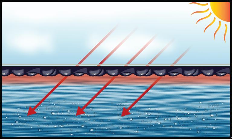 EnergyGuard selective transmission landscape